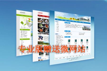 专业版独立域名企业官网