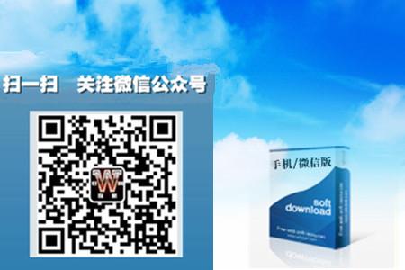 手机/微信版网站